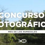 """El Acuario del Río Paraná convoca al concurso fotográfico: """"Retratos del Humedal"""""""