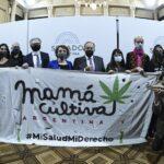 Kulfas destacó el potencial de sectores verdes, como el del cannabis medicinal y el cáñamo